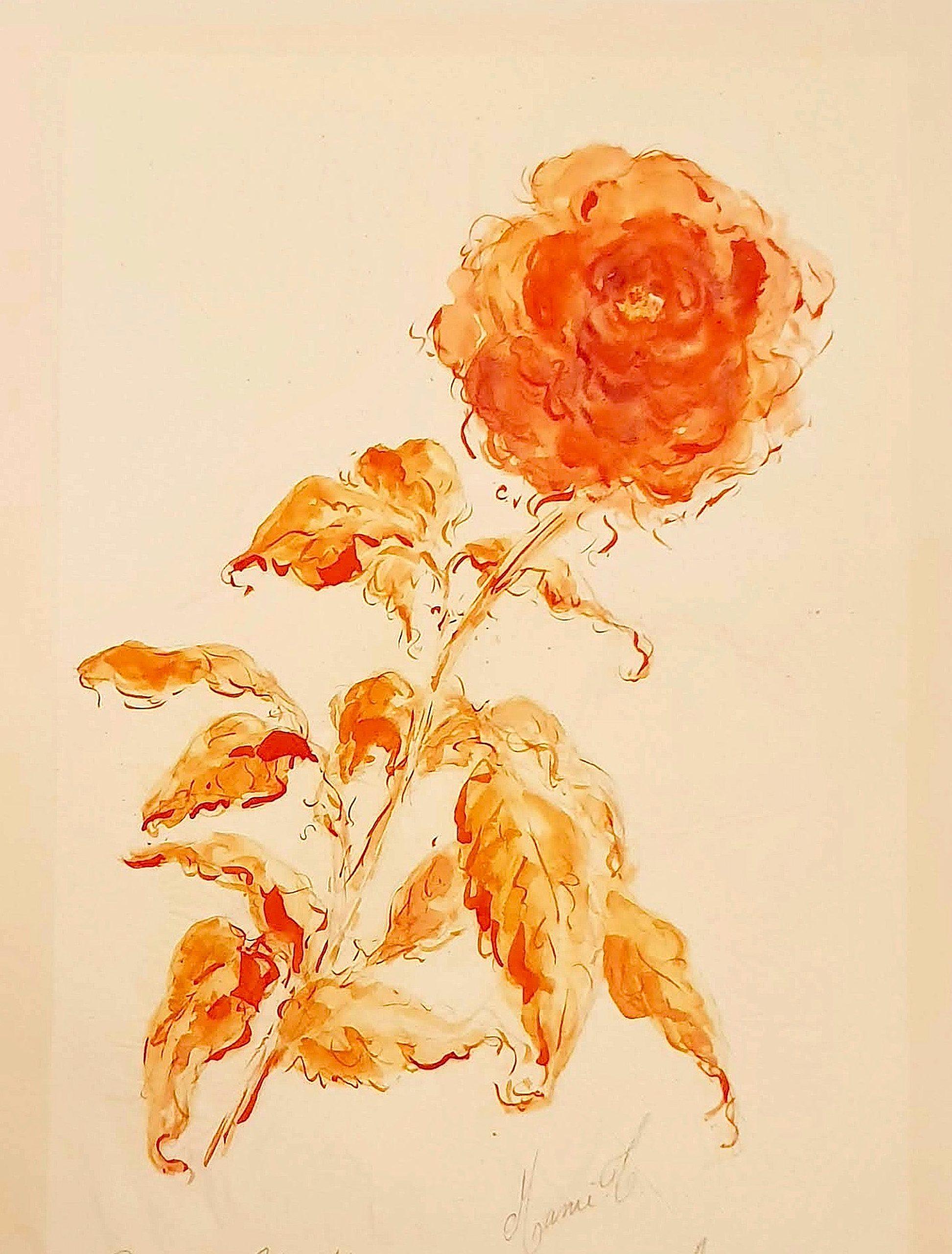 MAMI /  images. et Poésie, Roses Collection